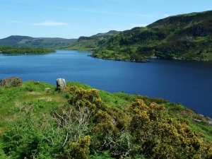 Bild vom Lough Caragh Co.Kerry